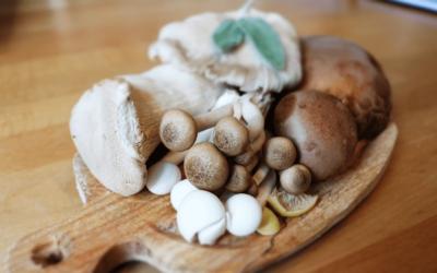 Fabulous Fungi? The Nutritional Benefits of Mushrooms
